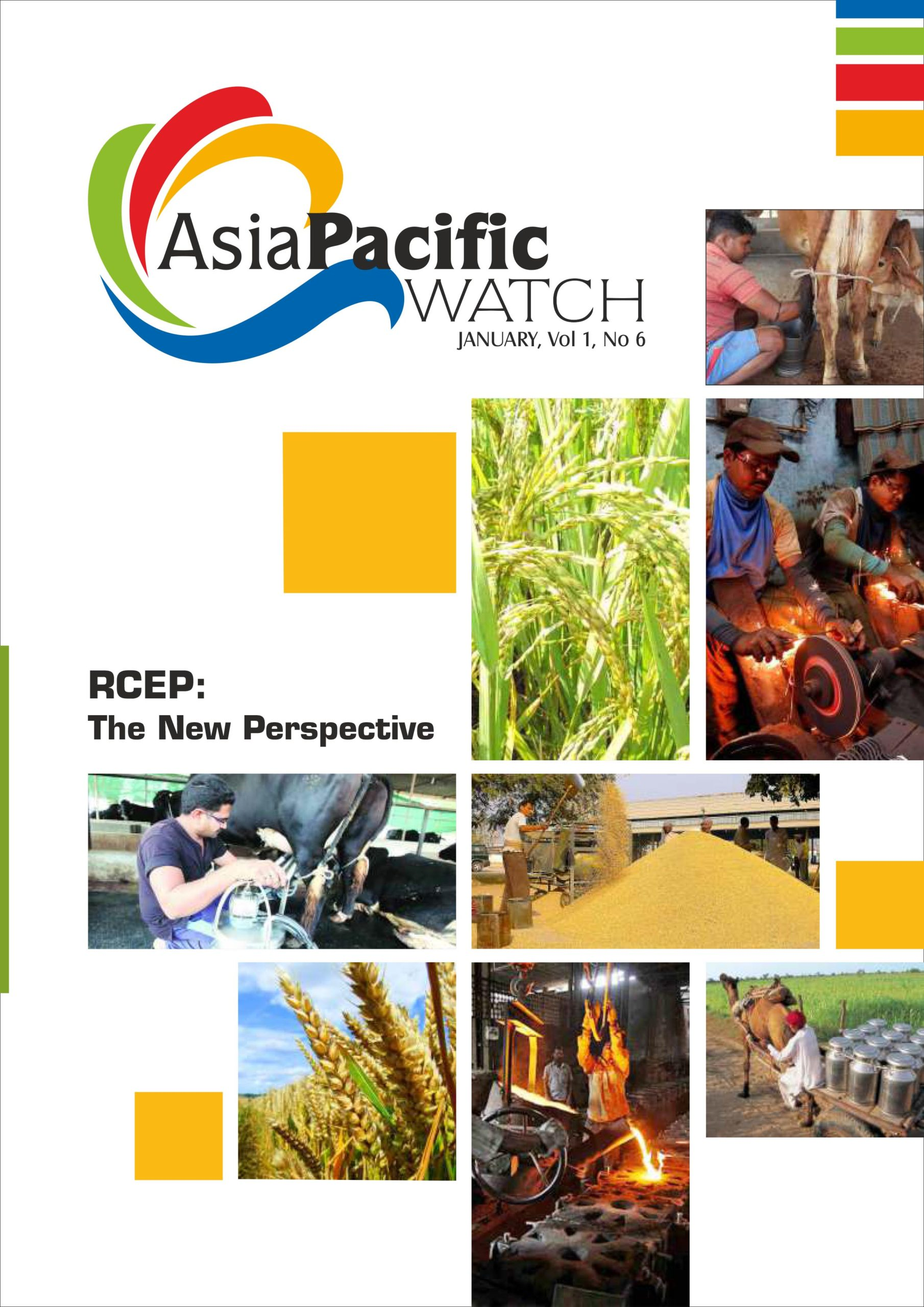 Asia Pacific | January 2021 | Vol 1 | No 6